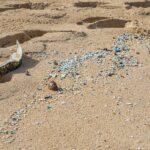 Primul studiu despre efectele microplasticului asupra sănătății umane arată că acesta ar putea altera funcționarea celulară