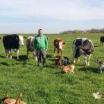 Trei probleme cu care se confruntă fermierul Cătălin Jivan, din Folea Timiș